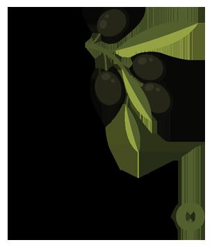 Olio extravergine di oliva Aprutino Pescarese dop Palozzo